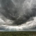 Dramatic skies over Nairobi NP, Kenya (2011)