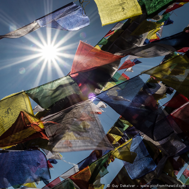 Prayer flags, Nepal (2013)